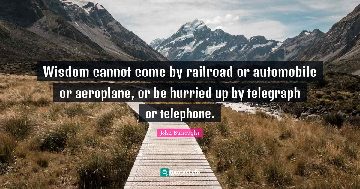 John Burroughs Quotes: Wisdom cannot come by railroad or automobile or aeroplane, or be hurried up by telegraph or telephone.