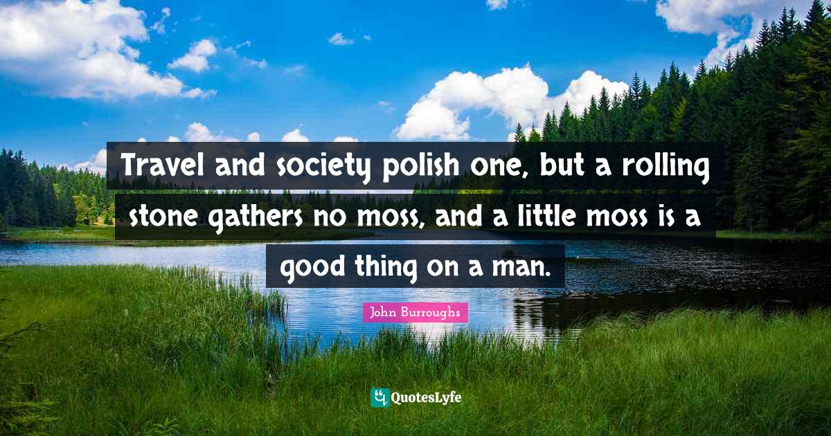 John Burroughs Quotes: Travel and society polish one, but a rolling stone gathers no moss, and a little moss is a good thing on a man.