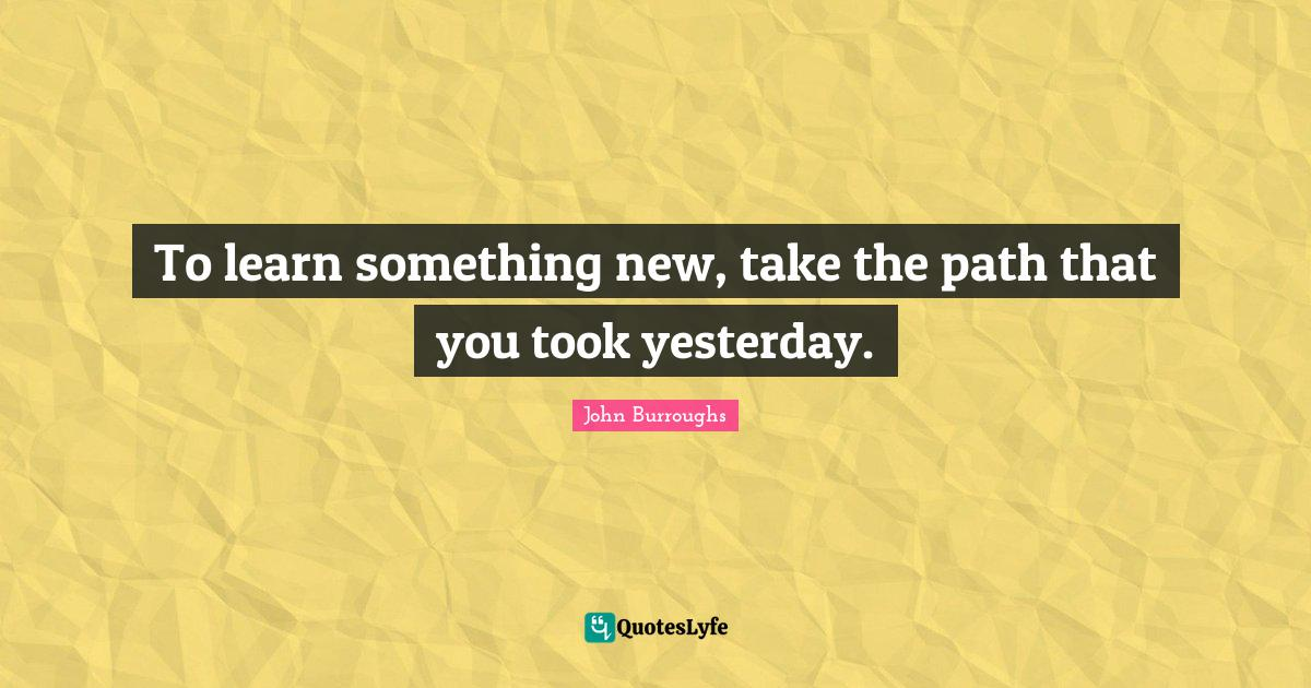 John Burroughs Quotes: To learn something new, take the path that you took yesterday.