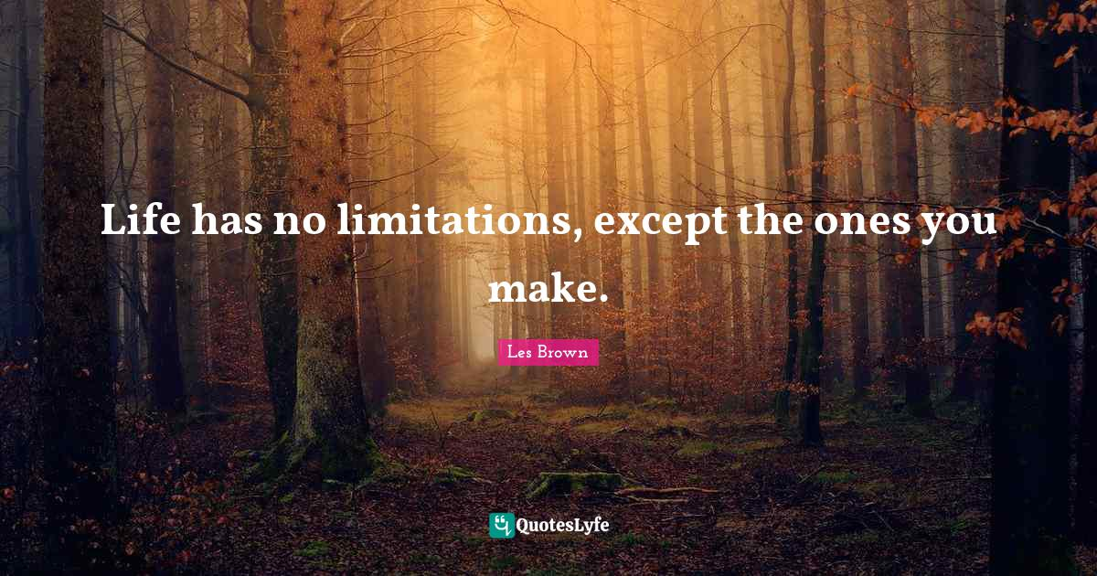 Les Brown Quotes: Life has no limitations, except the ones you make.