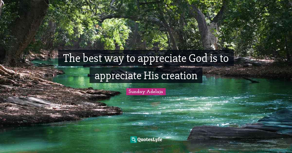 Sunday Adelaja Quotes: The best way to appreciate God is to appreciate His creation