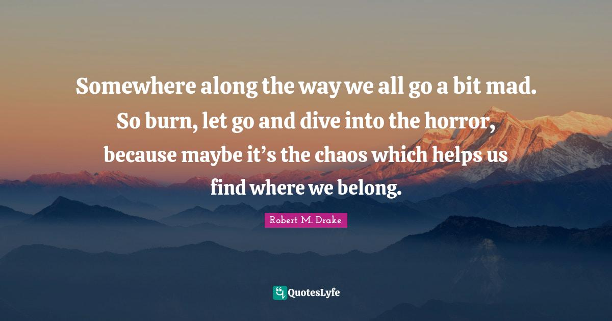 Robert M. Drake Quotes: Somewhere along the way we all go a bit mad. So burn, let go and dive into the horror, because maybe it's the chaos which helps us find where we belong.