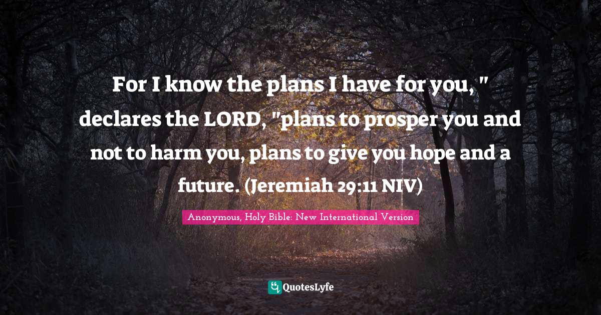 Anonymous, Holy Bible: New International Version Quotes: For I know the plans I have for you,