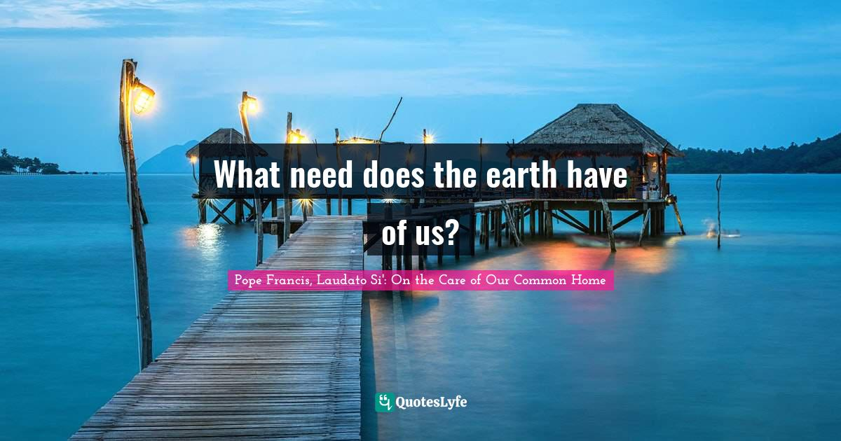 Pope Francis, Laudato Si': On the Care of Our Common Home Quotes: What need does the earth have of us?