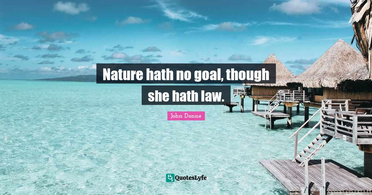 John Donne Quotes: Nature hath no goal, though she hath law.