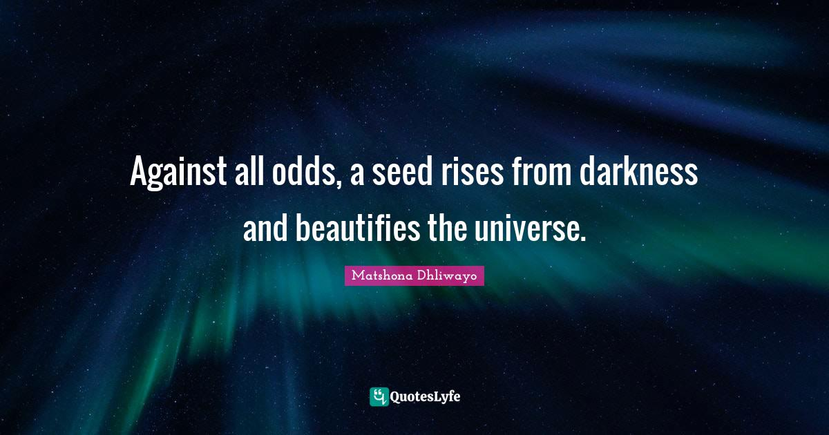 Matshona Dhliwayo Quotes: Against all odds, a seed rises from darkness and beautifies the universe.