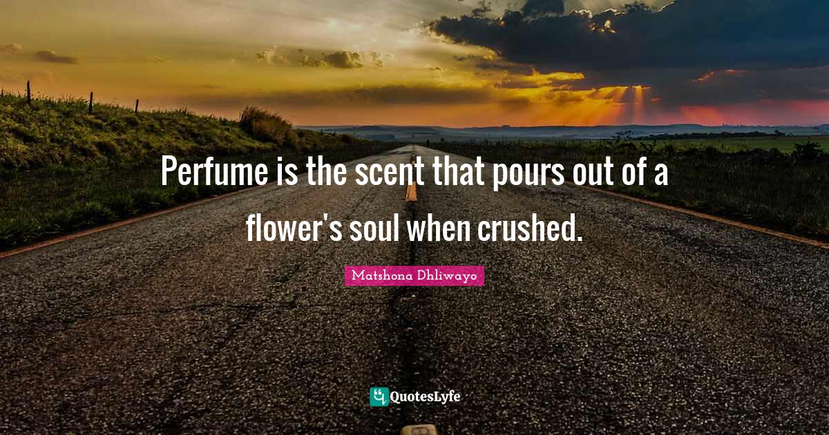 Matshona Dhliwayo Quotes: Perfume is the scent that pours out of a flower's soul when crushed.
