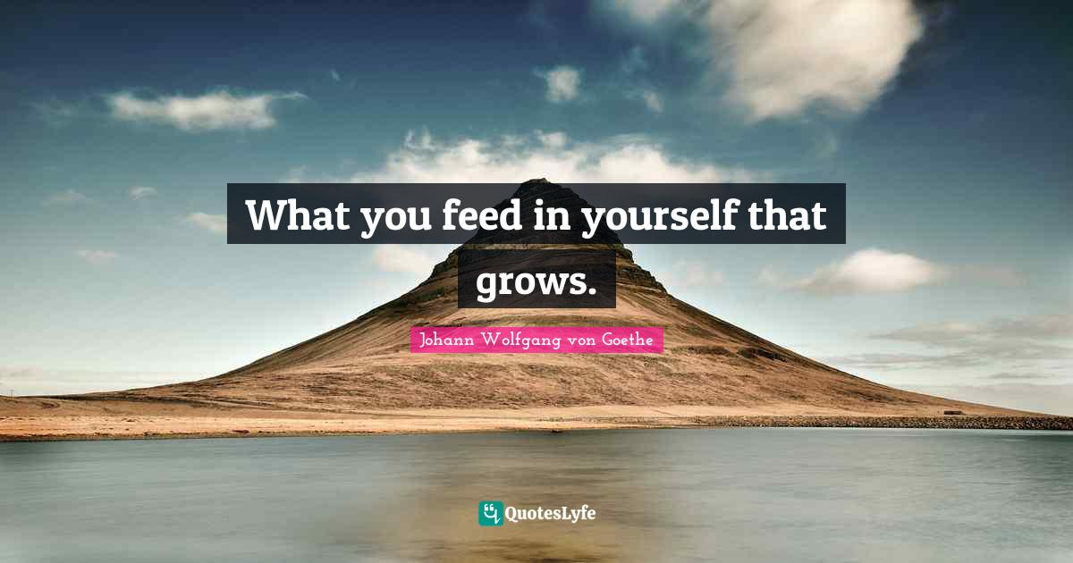 Johann Wolfgang von Goethe Quotes: What you feed in yourself that grows.
