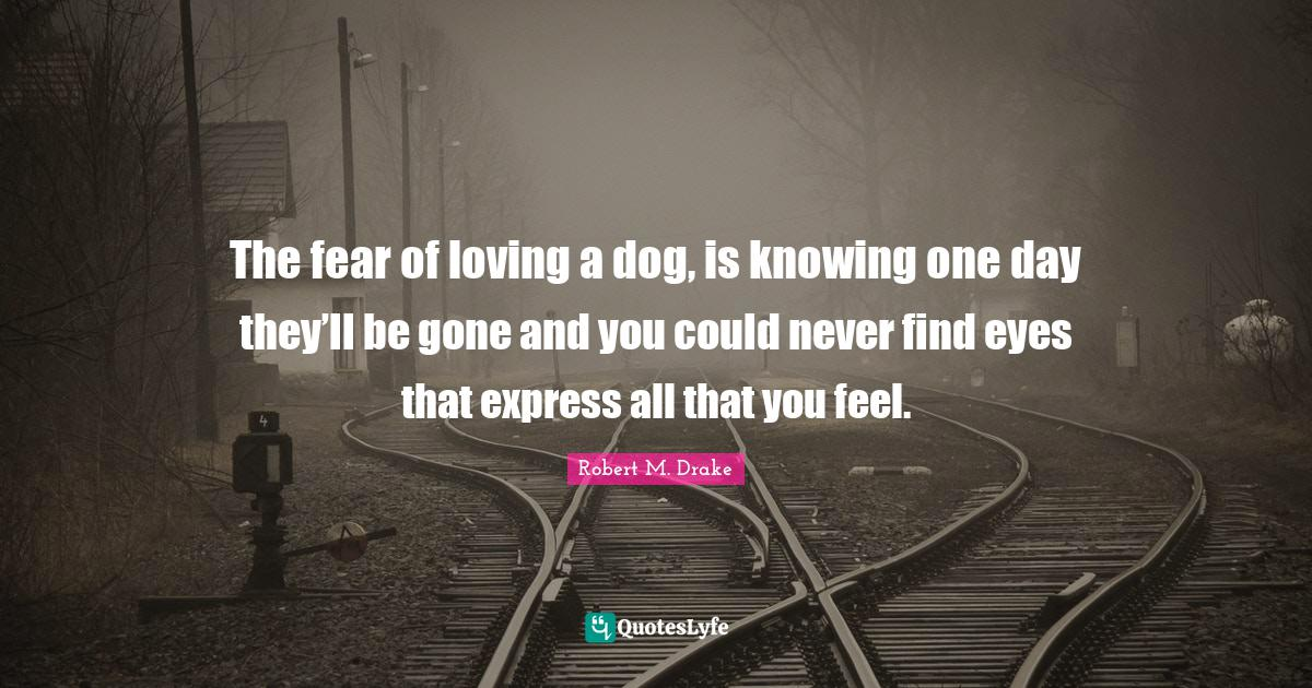 Robert M. Drake Quotes: The fear of loving a dog, is knowing one day they'll be gone and you could never find eyes that express all that you feel.